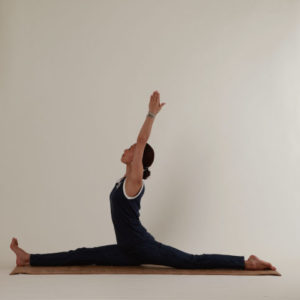 yoga529